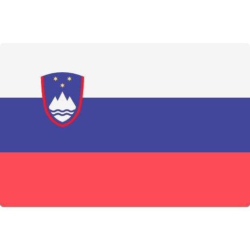 SL Language